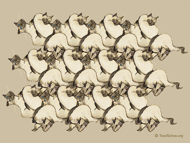 Siamese Cat Tessellation by Dr. David Annal