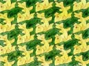 development 1 tessellation by m c escher