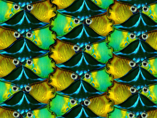 Two Tropical Fish + Ray Tesselated Escher-style