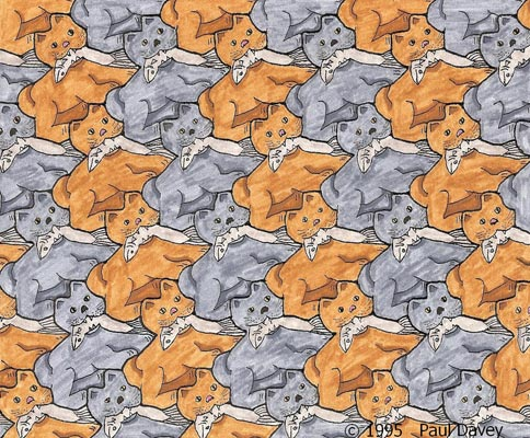 Cat with Fish Tessellation by Paul Davey