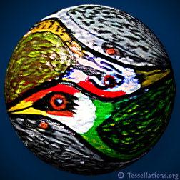 woodpecker theme spherical tessellation art