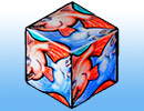 12 goldfish tessellation papercraft cube
